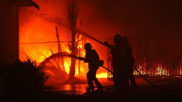 Лісові пожежі