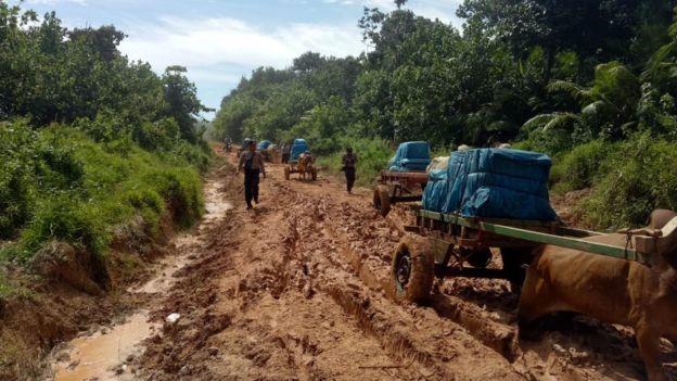 Kapolsek Bengkunat Iptu Ono Karyono mengatakan karena tanah berlumpur, jalan tersebut tidak bisa dilewati kendaraan bermotor.
