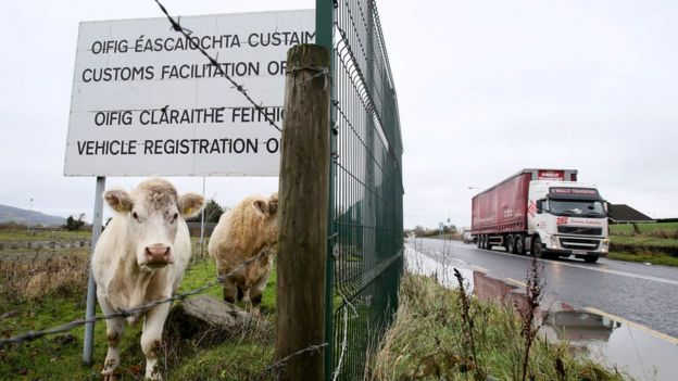 Cows under a sign at a disused Irish border vehicle registration and customs facilitation office outside Dundalk