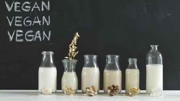 Distintos tipos de leche vegana