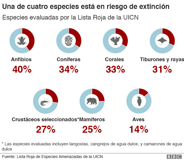 Gráfico sobre porcentajes de especies amenazadas
