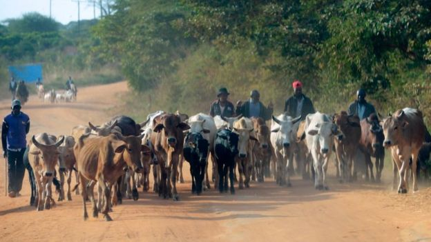 Farmers in Makueni County