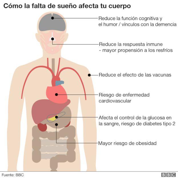 Efectos del sueño en el cuerpo.