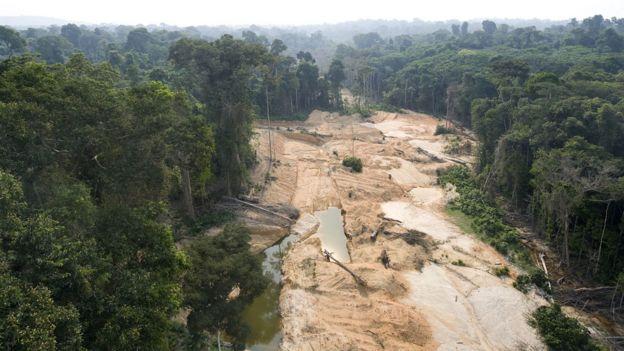 Desforestación causada por un campamento de explotación ilegal de oro