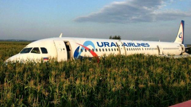 Ural Havayolları uçağı, bir martı sürüsünün arasına girerek, mısır tarlasına acil iniş yaptı.