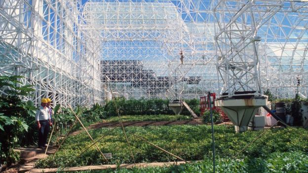 Zona de agricultura de Biosfera 2.