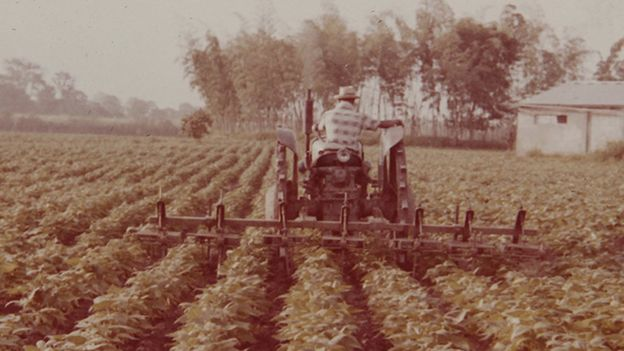 Japonés en tractor