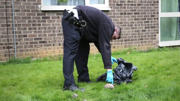 Police officer picks up a dead cat