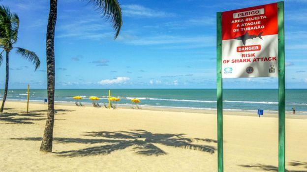 Placa na praia de Boa Viagem, em Recife, faz alerta sobre perigo de ataques de tubarão