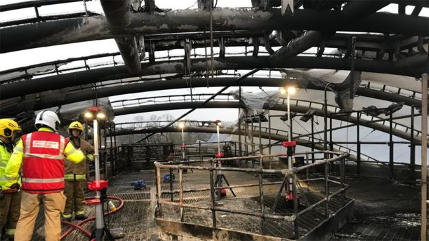 Chester Zoo Fire Funds To Be Spent On Conservation Bbc News - Heart-of-africa-biodome-at-chester-zoo