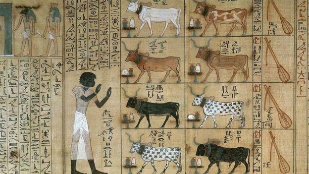 تمدنا اللغة المصرية القديمة بمعارف دقيقة عن الفكر المصري خلال عصوره المختلفة