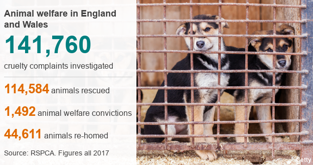 animal welfare in 2017: 141, 760 cruelty complaints investigated, 114,584 animals rescued, 1492 animal welfare convictions, 44,611 animals rehomed