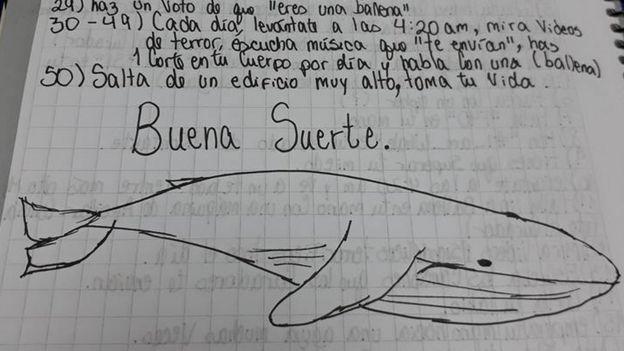 Resultado de imagen de ballena azul