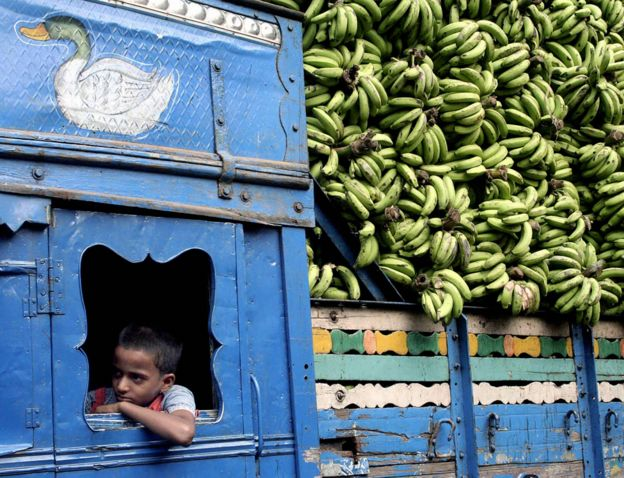 A lorry with a large load of bananas, Kolkata