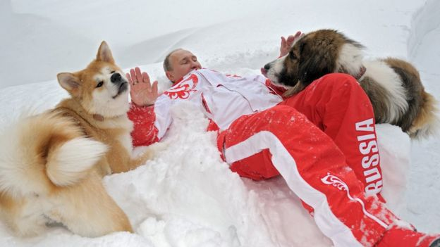 Image shows Russian President Vladimir Putin as he plays with his dogs