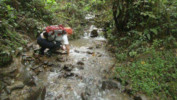 Teresa Camacho Badani buscando ranas en un río