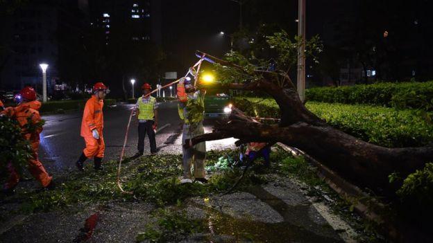 市政人員連夜清理在珠海市倒塌的樹木。