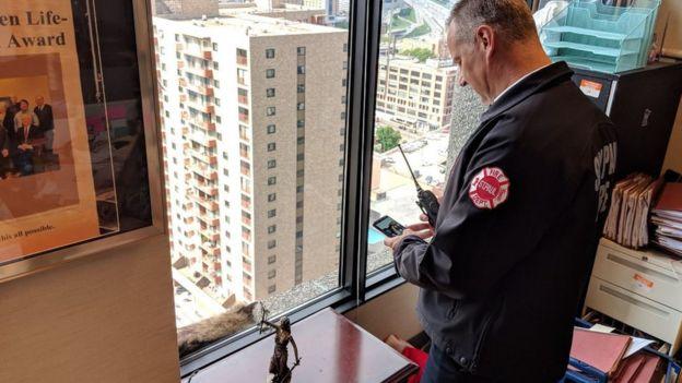 Вікна будівлі були зашиті з міркувань пожежної безпеки, тож рятувати тварину таким чином було неможливо. Єноту нічого не залишалося, як дертися далі вгору
