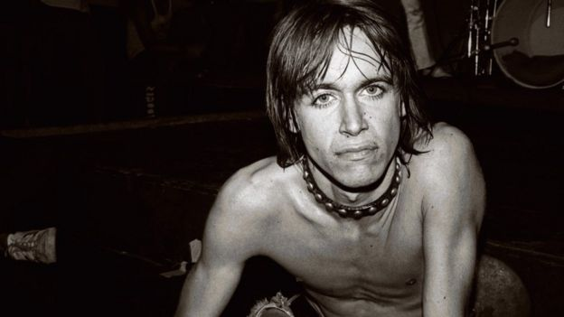 Image result for iggy pop