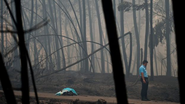 A policeman stands by a dead body of a victim of a wildfire in Pedrogao, on June 18, 2017