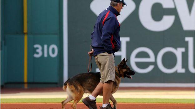 hombre pasea perro