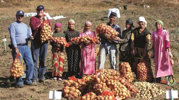 """En las estepas de Tayikistán, las comunidades locales también adoptaron las papas como uno de """"sus"""" productos."""