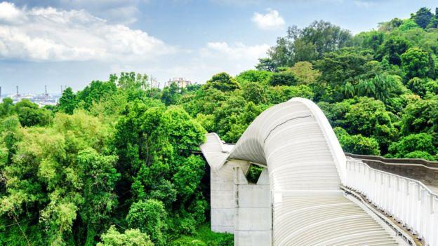 """Волны Хендерсона"", Сингапур"