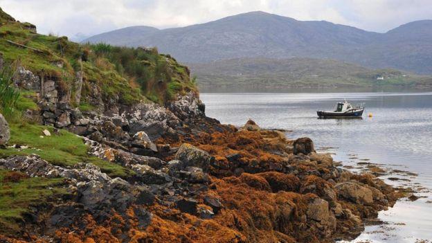 Una vista de las islas Hébridas Exteriores Foto: Harris Tweed Authority