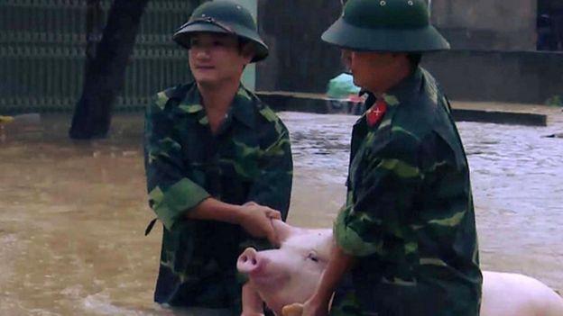 Thanh Hóa
