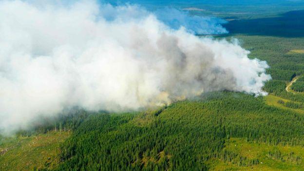 Imágenes de un incendio en Suecia