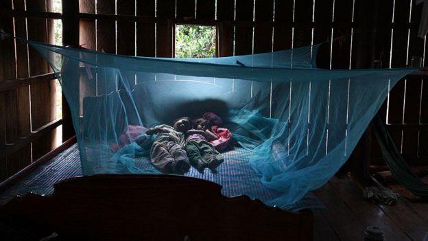 Niños durmiendo protegidos por un mosquitero