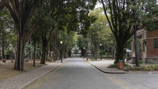 Parque Jardim da Luz, no centro de São Paulo, é o mais antigo da cidade