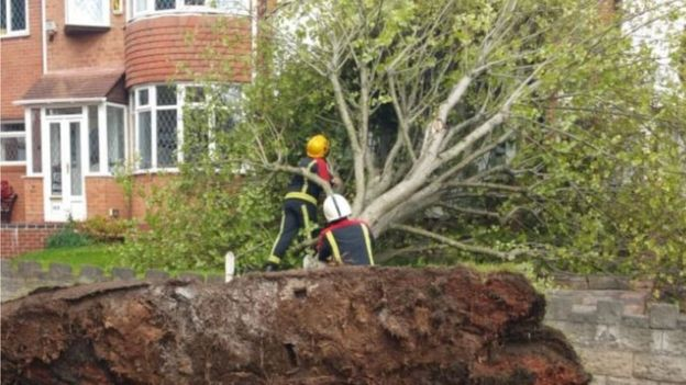 A house in Sandwell gets a lucky escape as a tree is blown down