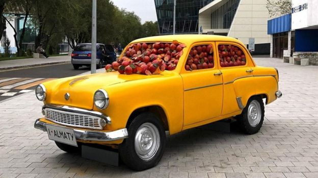 رحلة إلى مهد التفاح في العالم