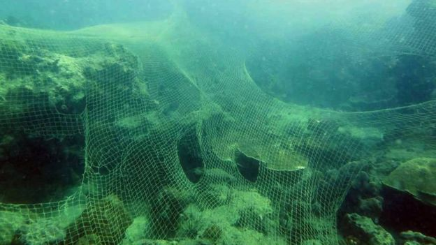 Nets on the sea bed