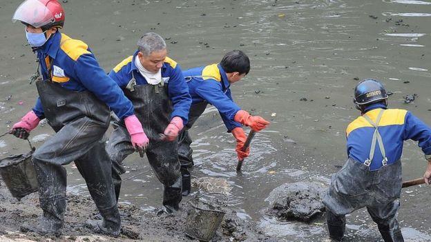 Bùn dưới đáy đã tích tụ dưới đáy sông Tô Lịch lưu cữu hàng chục năm qua.