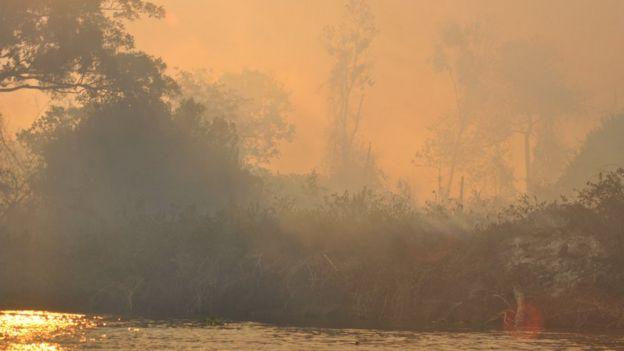 Focos de queimadas no Pantanal