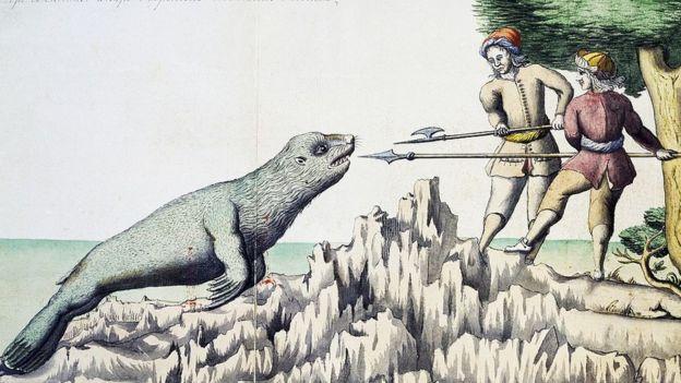 Expedicion de Magallanes frente a lobo marino