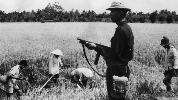 Nam Việt Nam tháng 3/1962: bảo vệ nông dân trên ruộng lúa
