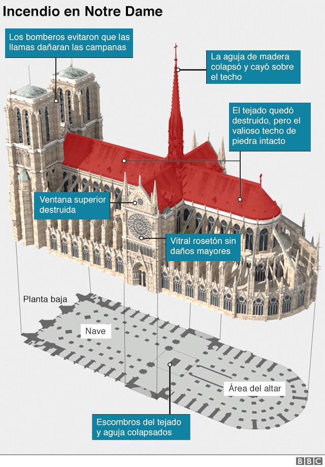 Gráfico catedral de Notre Dame