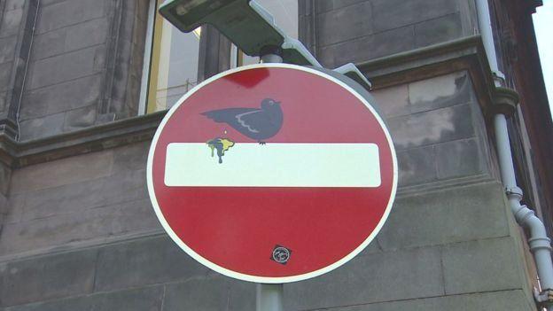 Знак СТОП з голубом