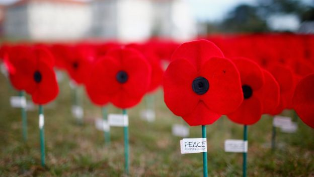 Five reasons people dont wear poppies bbc news poppies mightylinksfo