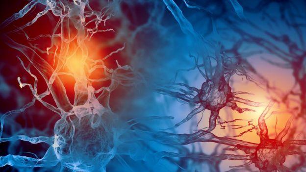 Beyindeki sinir hücreleri