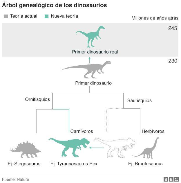De Dónde Vienen Realmente Los Dinosaurios El Inesperado Origen De
