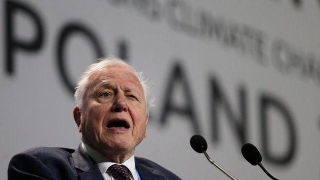 Ünlü belgesel yapımcısı David Attenborough