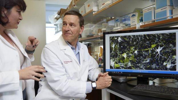 Clive Svendsen, o líder do estudo, ao lado da pesquisadora Nur Yucer, conversam sobre imagem microscópica de neurônios produtores de dopamina