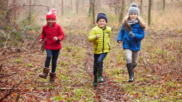 Niños caminando en un bosque