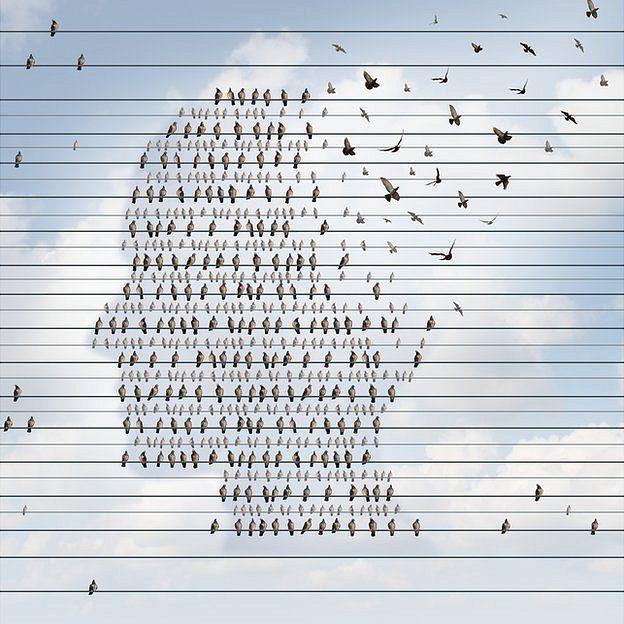 Pájaros en líneas formando perfil de hombre y algunos vuelan desde la cabeza