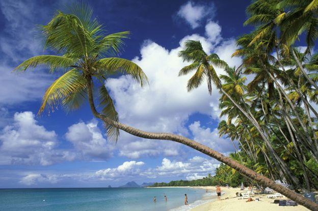 Grande Anse des Salines, Martinica, foto de archivo