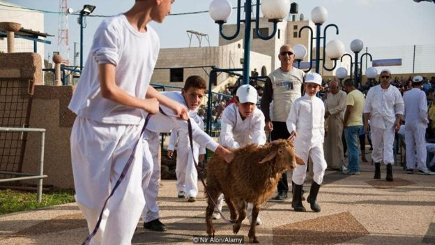 Scholars and tourists come from around the world to witness the Paschal sacrifice, which is performed as it's described in the Book of Exodus